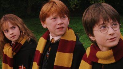 Quiz : choisis tes 7 séries préférées, on te dira si t'es plus Harry, Ron ou Hermione