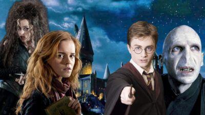 Tes préférences séries nous diront quel combo de persos méchant + gentil de Harry Potter tu es