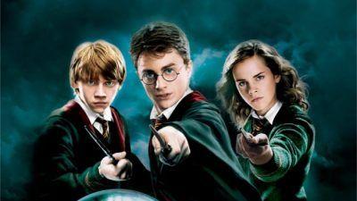 Quiz : seul un vrai fan saura dire à qui appartiennent ces baguettes dans Harry Potter