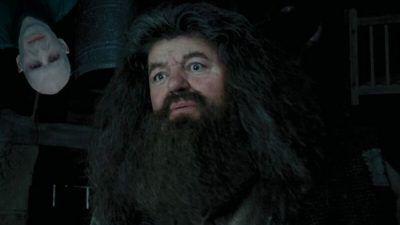 Harry Potter : et si Hagrid était secrètement un mangemort ? La folle théorie