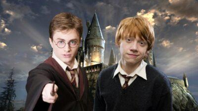 Tes préférences te diront si t'es fait(e) pour Harry Potter ou Ron Weasley