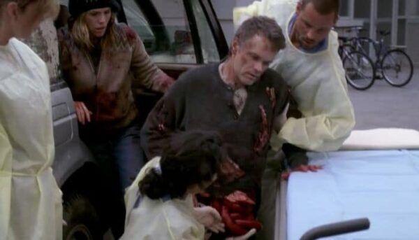 Grey's Anatomy attaque de l'ours
