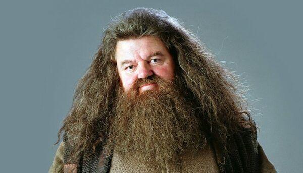 Rubeus Hagrid Harry Potter