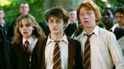 Harry Potter : mauvaise nouvelle ! TMC ne diffusera pas la suite de la saga, les fans sont déçus