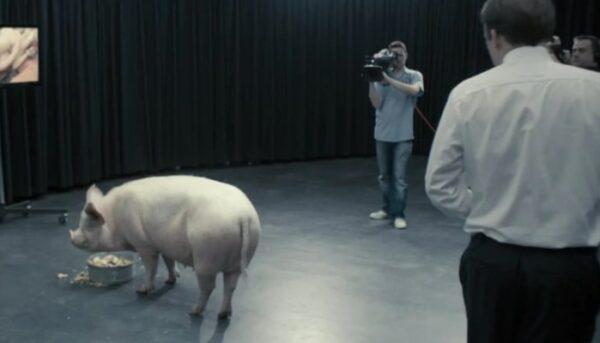 black mirror, épisode 1, cochon