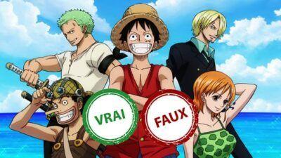 Quiz One Piece : impossible d'avoir 10/10 à ce vrai ou faux sur la saga East Blue