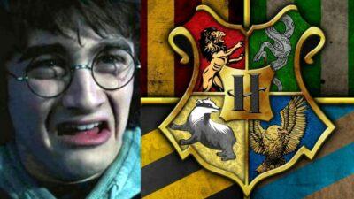 Sondage Harry Potter : dans quelle Maison Poudlard ne voudrais-tu surtout pas être ?
