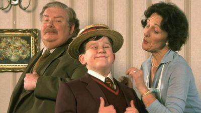 Harry potter : cette théorie de fan explique pourquoi les Dursley sont si méchants