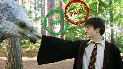 Harry Potter : seul un vrai fan aura 10/10 à ce quiz vrai ou faux sur les créatures magiques
