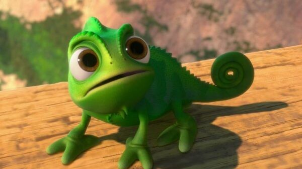 Pascal raiponce