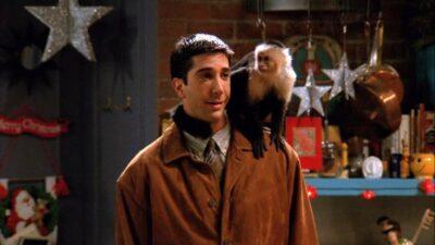 Friends : seul quelqu'un qui a vu 5 fois l'épisode de l'arrivée de Marcel aura tout bon à ce quiz