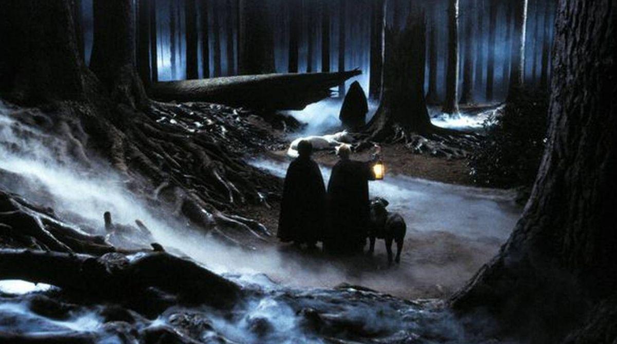 Passer une nuit seul.e dans la forêt interdite