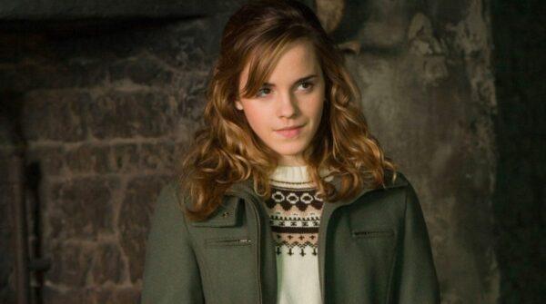 Hermione Harry Potter