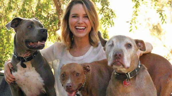 sophia-bush-chiens