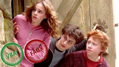 Impossible d'avoir 10/10 à ce quiz vrai ou faux sur Harry Potter et le Prisonnier d'Azkaban