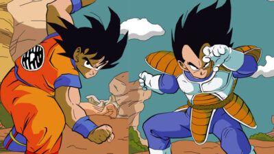Sondage Dragon Ball Z : qui préfères-tu entre Goku et Vegeta ?